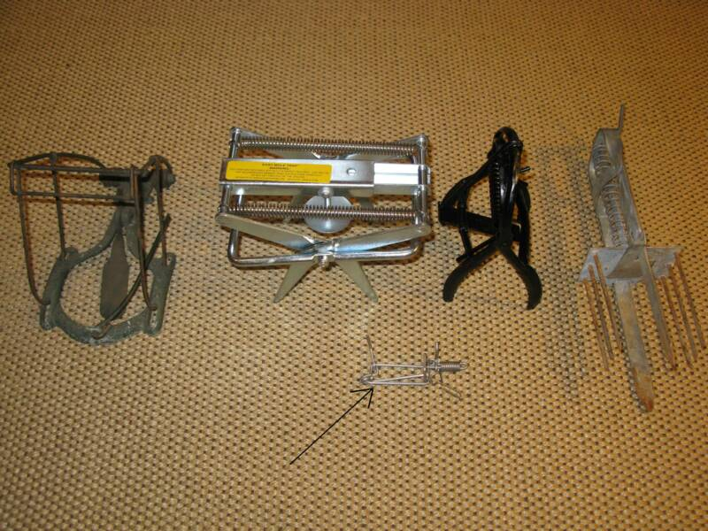 Size comparison of Trapline Mole trap to other mole traps